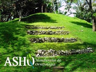 Parque arqueológico Los Naranjos.