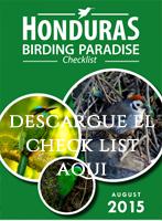 birdsofhonduras.org