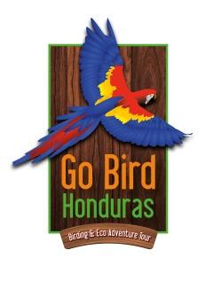 Arte-Logo Go bird Honduras-01